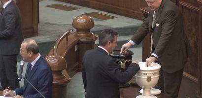 PNL ii cere lui Dragnea reluarea votului in cazul Oprea