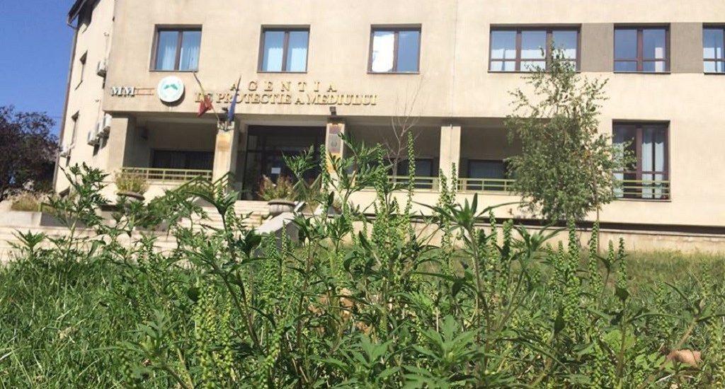 Luare de mita la APM Bihor. DNA Oradea a inceput urmarirea penala asupra unui angajat al acesteia