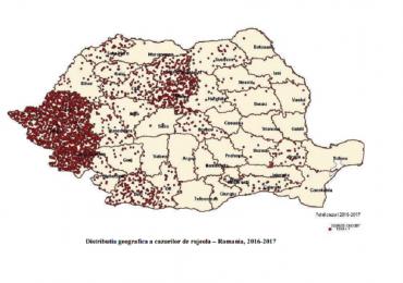 24 de cazuri de rujeola la nivelul judetului Bihor. Peste 3100 la nivel national, inregistrandu-se 17 decese