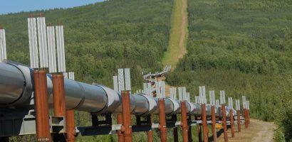 Senatorul Cornel Popa, interpeleaza Ministrul Energiei, ingrijorat fiind de situatia construirii retelei de gaze din Stei