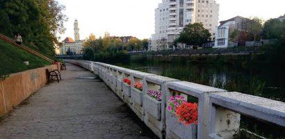 """""""Faleza Florilor"""" – adopta si tu un ghiveci si transforma Oradea in Orasul Florilor"""