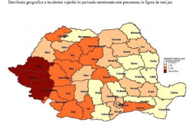 28 de cazuri confirmate, de rujeola, in judetul Bihor si peste 4000 in intreaga tara