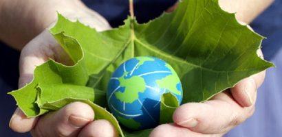 5 iunie Ziua Mondiala a Mediului Inconjurator. La noi tacere si ignoranta