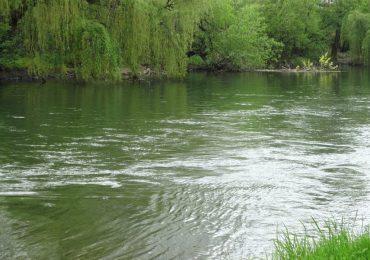 Barbat gasit inecat in apele Crisului Repede, in aceasta dimineata