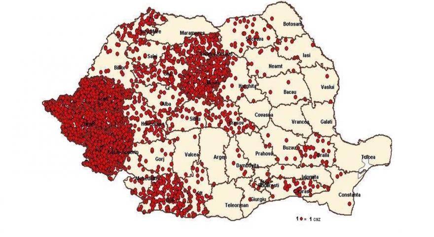 Crestere alarmanta! 256 cazuri de rujeola in judetul Bihor, pana in iulie in 2017