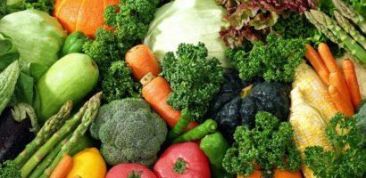 Județul Bihor va avea cel mai mare depozit și procesator de legume din țară, la Nojorid