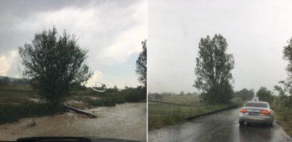 Ravagii facute de furtuna ce a afectat Defileul Crisului Repede si in special localitatea Suncuius