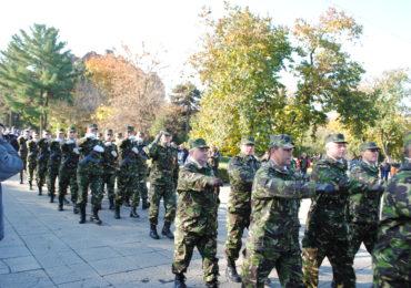Ziua Armatei Romane, sarbatorita la Oradea, la Statuia Ostasului Roman (FOTO)