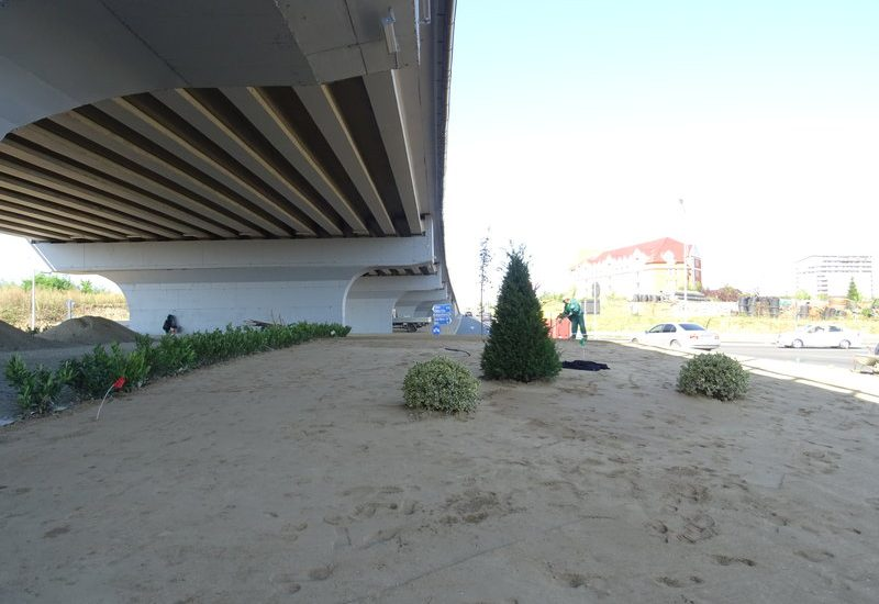 spatii verzi sensuri giratorii Oradea