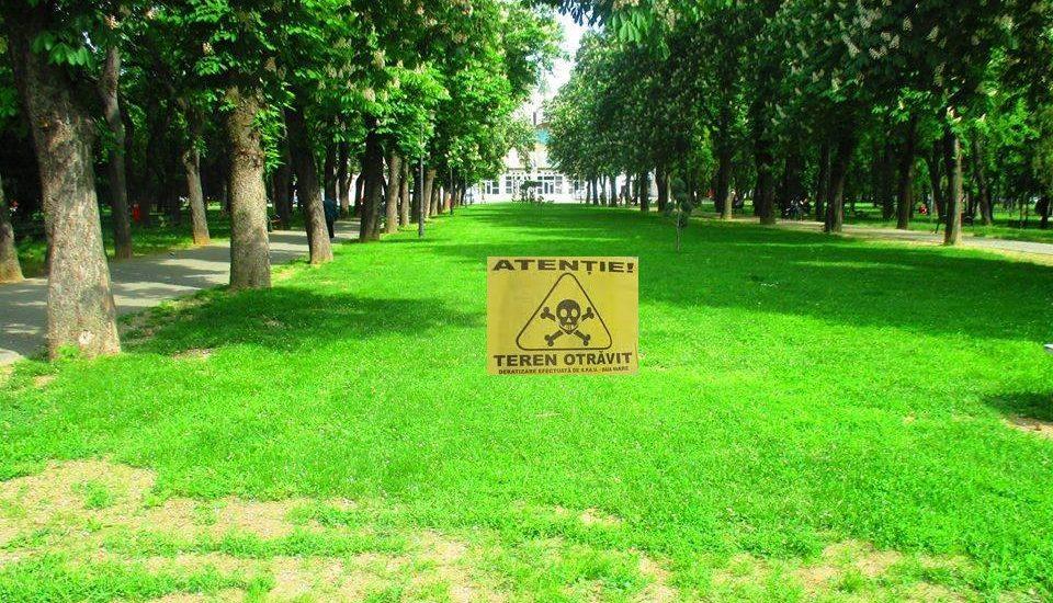 ATENTIE la copii si animalele de companie! Primaria va deratiza parcurile, spatiile verzi si malurile de ape