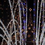 Targul de Craciun Oradea 2016 si-a deschis portile, intr-un decor de poveste. GALERIE FOTO
