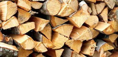 Primaria Oradea vinde lemne de foc, din propriul fond forestier