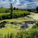 Aqua Crisius, Grupul Milvus și Agenția de Management al Destinației au luat in administrare Parcul Natural Cefa
