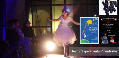SPECTACOLE și ATELIERE ale Asociației Experiment. Teatru. Clandestin. (E.T.C.)