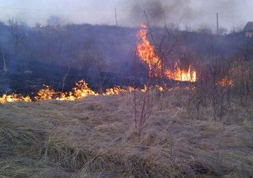 APM Bihor avertizeaza: Arderea miriştilor este strict interzisă si se face in conditiile legii