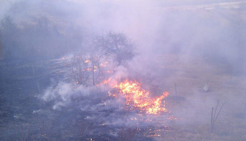 Protectia Mediului Bihor avertizeaza: Incendierea resturilor vegetale se poate lasa cu amenzi