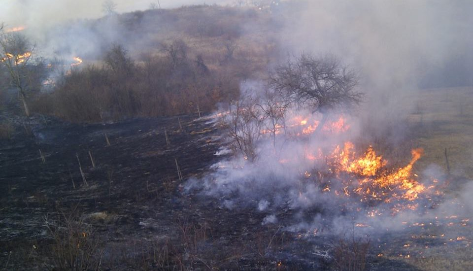 11 incendii de vegetatie in mai putin de 24 de ore, in mai multe localitati din judetul Bihor
