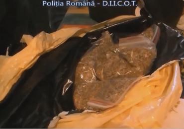 Grupare de traficanti de droguri, din Oradea, destructurata de BCCO. VIDEO