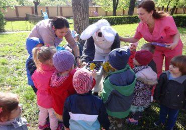 DASO si Primaria Oradea vor deschide o noua cresa, avand in vedere numarul mare de copii aflati pe lista de asteptare
