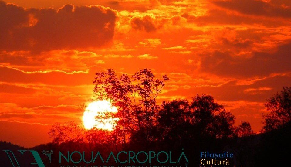 Noua Acropola Oradea vă invită la un cerc de poezie