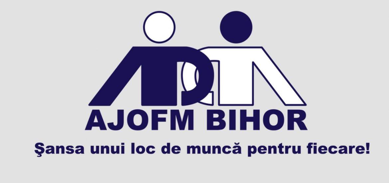 AJOFM Bihor organizeaza o minibursa a locurilor de munca la Marghita. Vezi ce posturi sunt disponibile