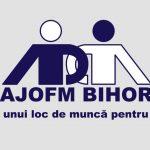 A.J.O.F.M. BIHOR organizează selecție pentru studenții care doresc să lucreze ȋn Germania