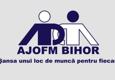 AJOFM Bihor: Agenții economici pot încheia contracte de ucenicie si pot beneficia de 1.125 lei/luna