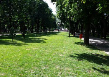 Primaria Oradea organizeaza dezbatere publica cu privire la spatiile verzi