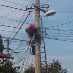 Tragedie! Un bărbat care efectua lucrări pe un stâlp de electricitate din Batar, s-a electrocutat si a murit