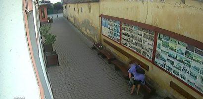 Hoata de flori. O salontanca deconspirata de camerele Casei de Cultura in timp ce fura flori din jardinierele institutiei
