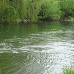 ABA Crisuri dragheaza apele din judetul Bihor