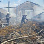 Incendiu ieri dimineata, in Miersig, la un adapost de animale (FOTO)