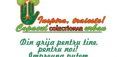"""Copacul """"COLECTIONAR"""" urban. Proiect-concurs dezvoltat de Asociatia """"PITICOT"""" in parteneriat cu Facultatea de Protectia Mediului din Oradea"""