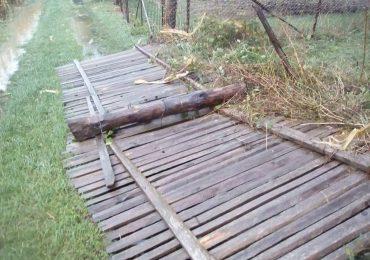 furtuna Bihor efecte
