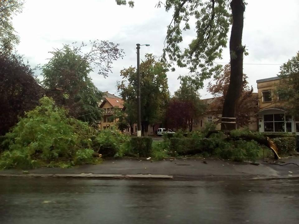 Furtuna beius Bihor 17.09.2017