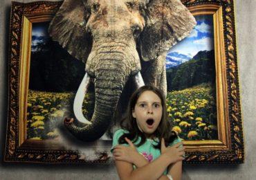 Muzeul iluziilor optice revine la Oradea in luna februarie