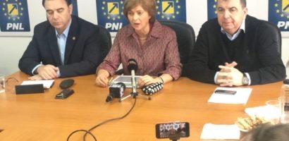Raport de activitate, pe anul 2017, al deputatului liberal de Bihor, Florica Chereches