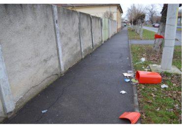 Vandalism cosuri gunoi Oradea