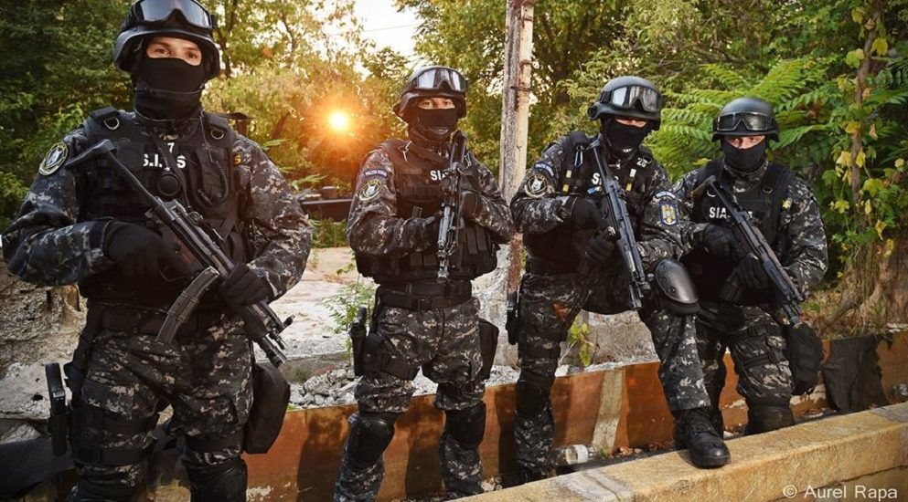 Descinderi ale mascatilor, in judetul Bihor, intr-un mega dosar de evaziune fiscala