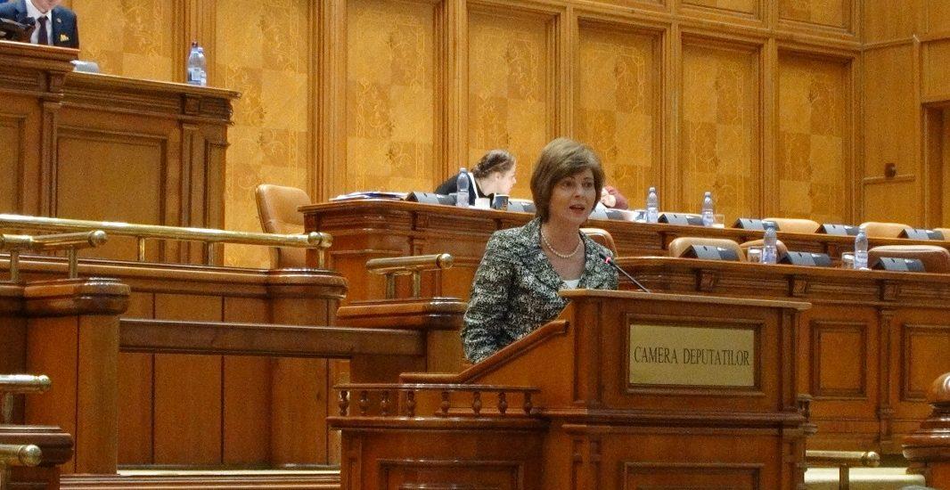 """Florica Chereches: """"Pentru PSD, Educația este prioritate națională doar pe hârtie și în declarații"""""""