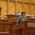 Florica Chereches: Echipajele Salvamont trebuie dotate cu girofar, dar PSD se opune acestei initiative legislative