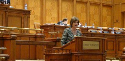 Florica Chereches: Foamea guvernului după bani face victime și în rândul ONG-urilor!