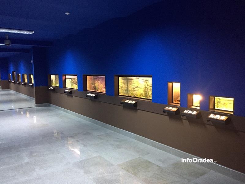Vivariu Muzeul Tarii Crisului Oradea