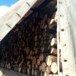 Bihorean prins de politisti in timp ce transpora peste 17 mc de lemne, in mod repetat cu acelasi aviz