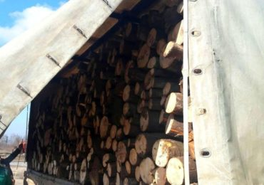 Jandarmii bihoreni au confiscat un camion plin cu lemne, fara acte, langa Suncuius
