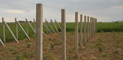 Ce mai fura lumea!? Un barbat din Fughiu a furat 10 stalpi de beton de pe terenul vecinului
