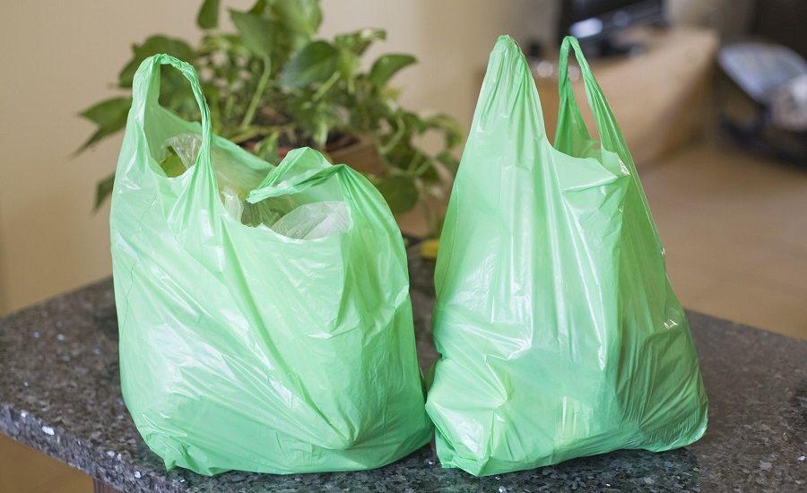 Adio pungilor de plastic. Camera Deputatilor a adoptat legea privind interzicerea comercializarii lor