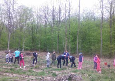 """Polițiștii bihoreni, implicați în acțiunea """"Luna Plantării Arborilor"""", menită să regenereze fondul forestier."""