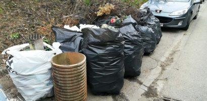 Primaria si mai multe ONG-uri au facut curatenie pe malul stang al Crisului Repede (FOTO)