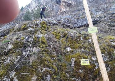 A treia Via Ferrata din Padurea Craiului, deschisa azi in parcul de aventură Montana Land Șuncuiuș